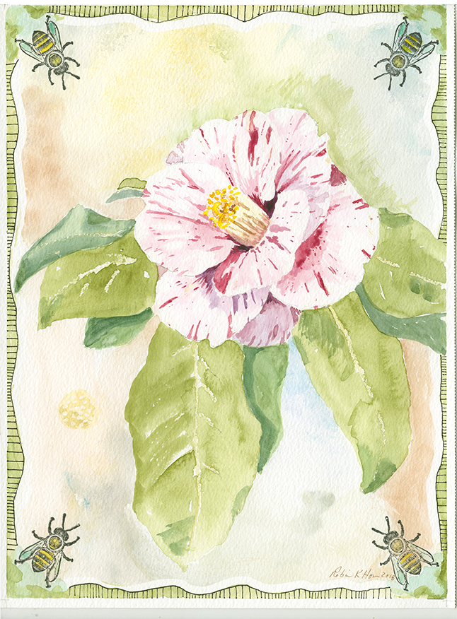 Pink and White Camilia