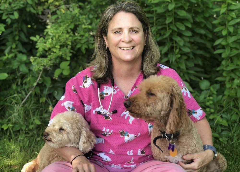 Dr. Caroline Bowater of South Bay Veterinary Clinic.