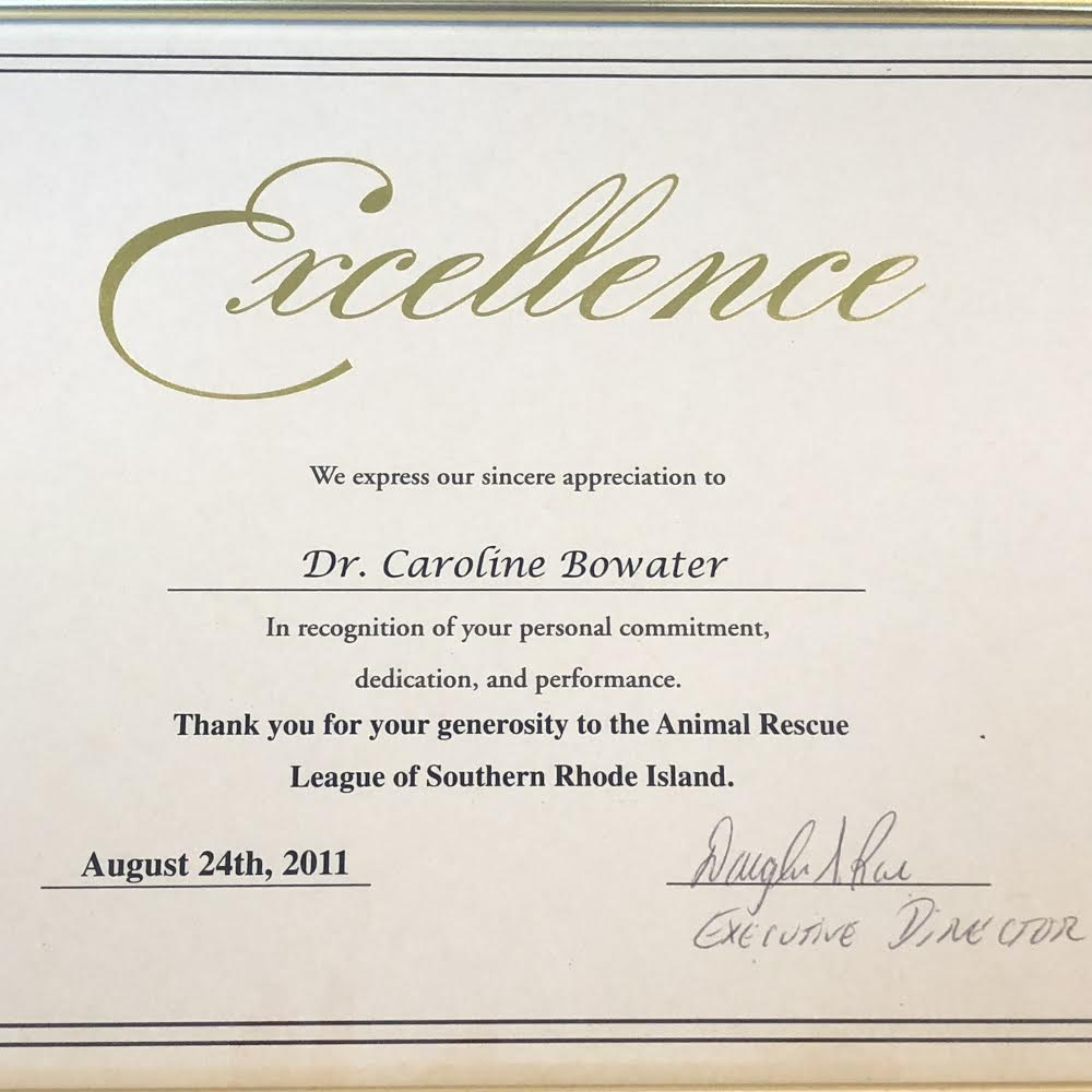 dr. caroline bowater of animal rescue league of southern rhode island.