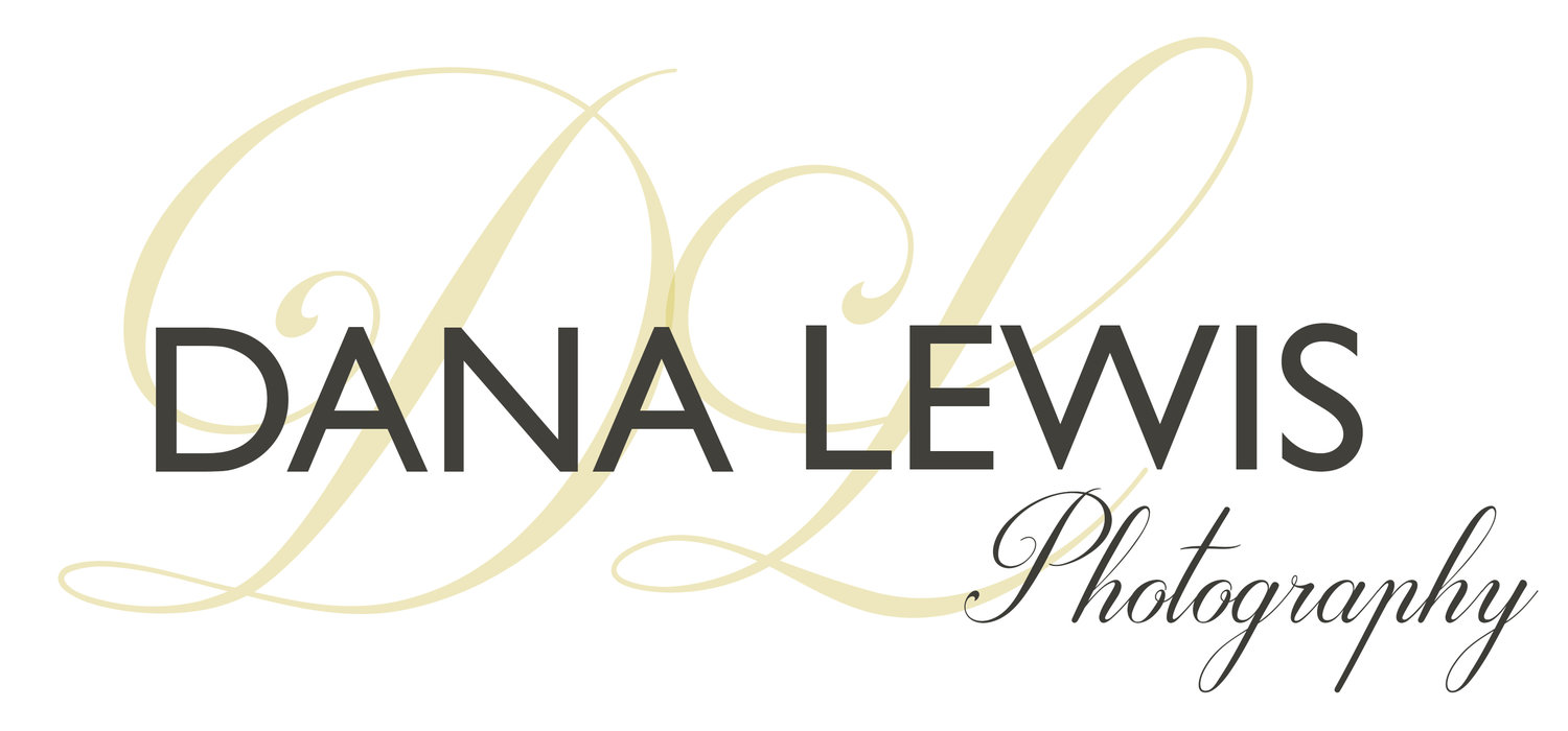 Wedding Photographer Shropshire - Dana Lewis Photography