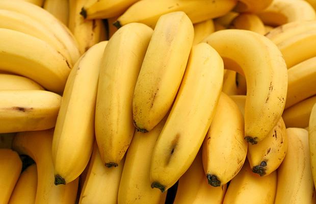 Mono eating Bananas