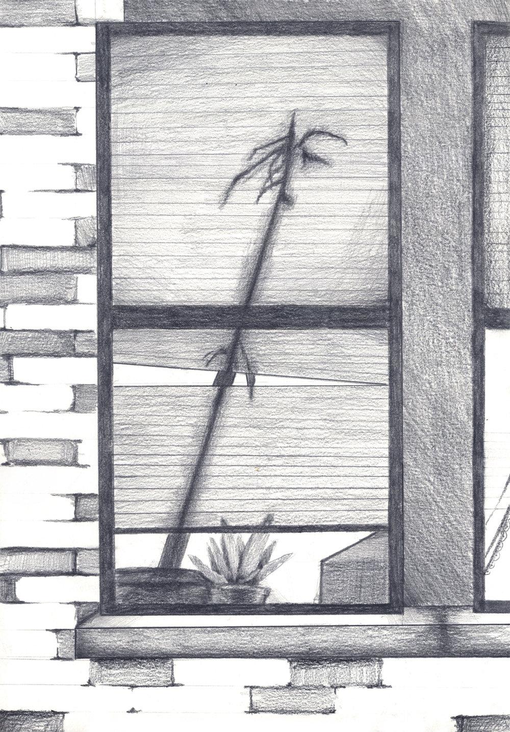 "Bay Ridge   Graphite on paper 9.5x13"""