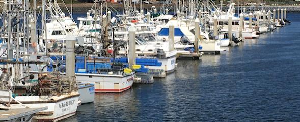 FishingBoats.png