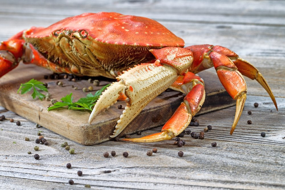 Dungeness Crab2.jpg