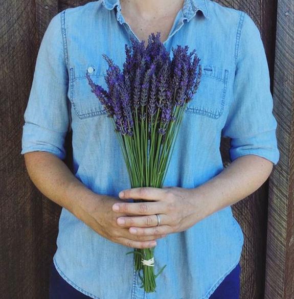 Deerhaven lavender Upick