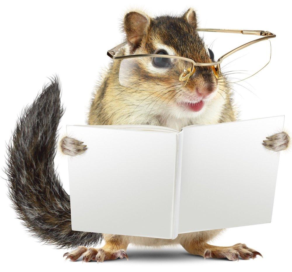 AnimalBooklist-ThisOutsideLife.com%252Frescue.jpg
