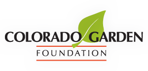 CGS-FoundationLogoGlow3.png