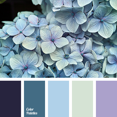 Color palette provided by the client