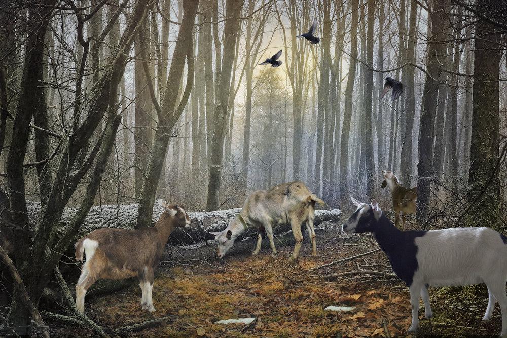 Winter - Pastorale