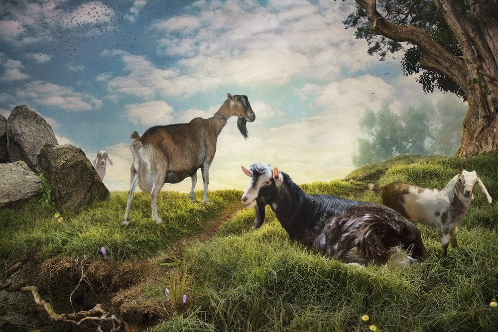 Spring - Pastorale
