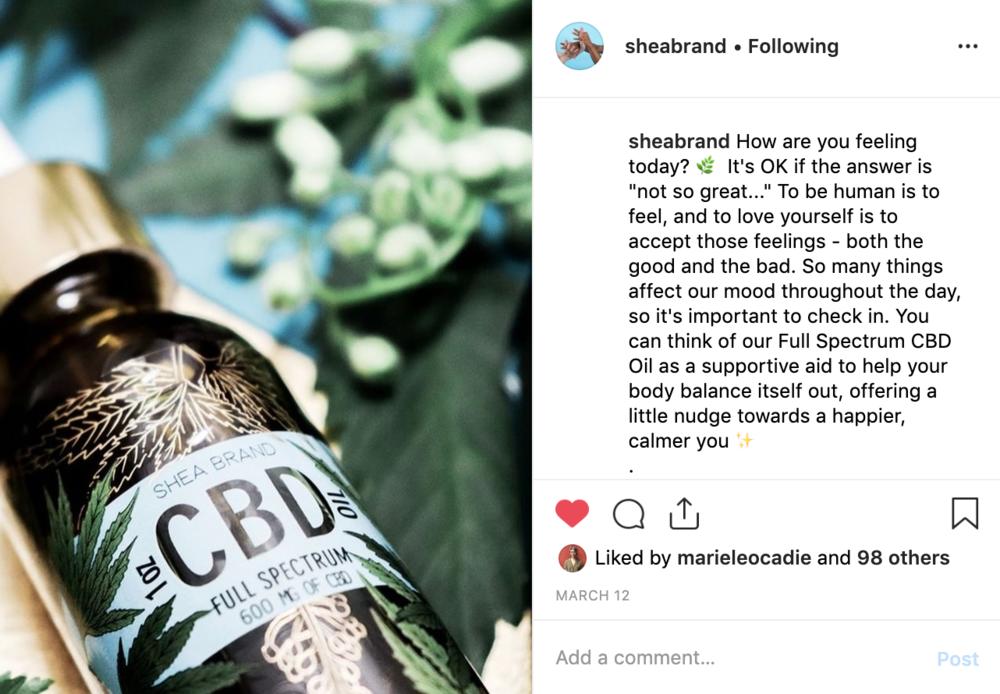 Instagram for Shea Brand