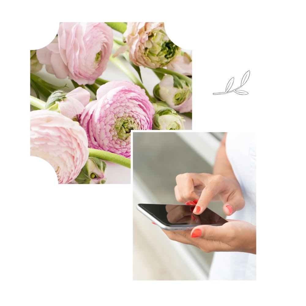 Flowers, woman holding iphone.