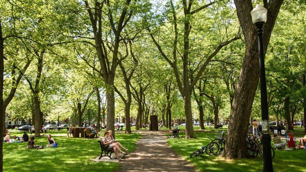 Green Day (Parc Molson, Montréal) . Photo Credit: Caribb (flickr).