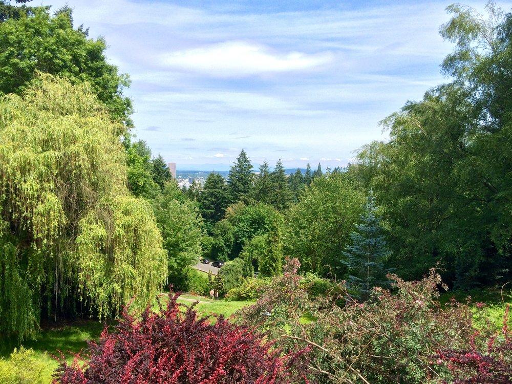 Portland_Callie_Rosegarden.JPG