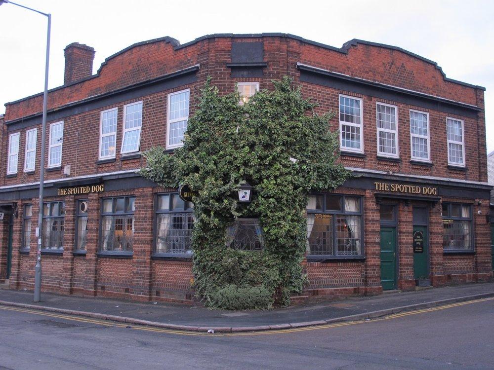 Birmingham_KevinFraser_Pub with Vines.jpg