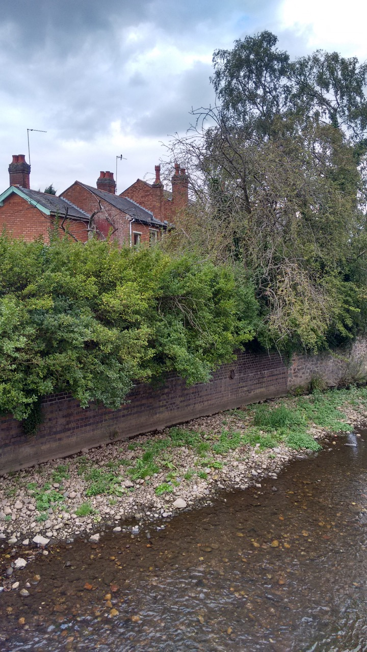 Birmingham_KevinFraser_River Rea.jpg