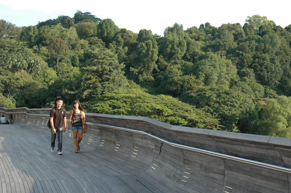 Singapore_003_TimBeatley.JPG