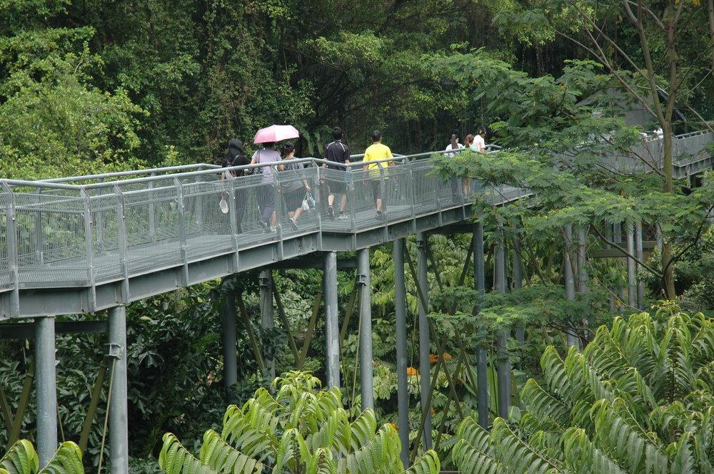 Singapore_004_TimBeatley.JPG