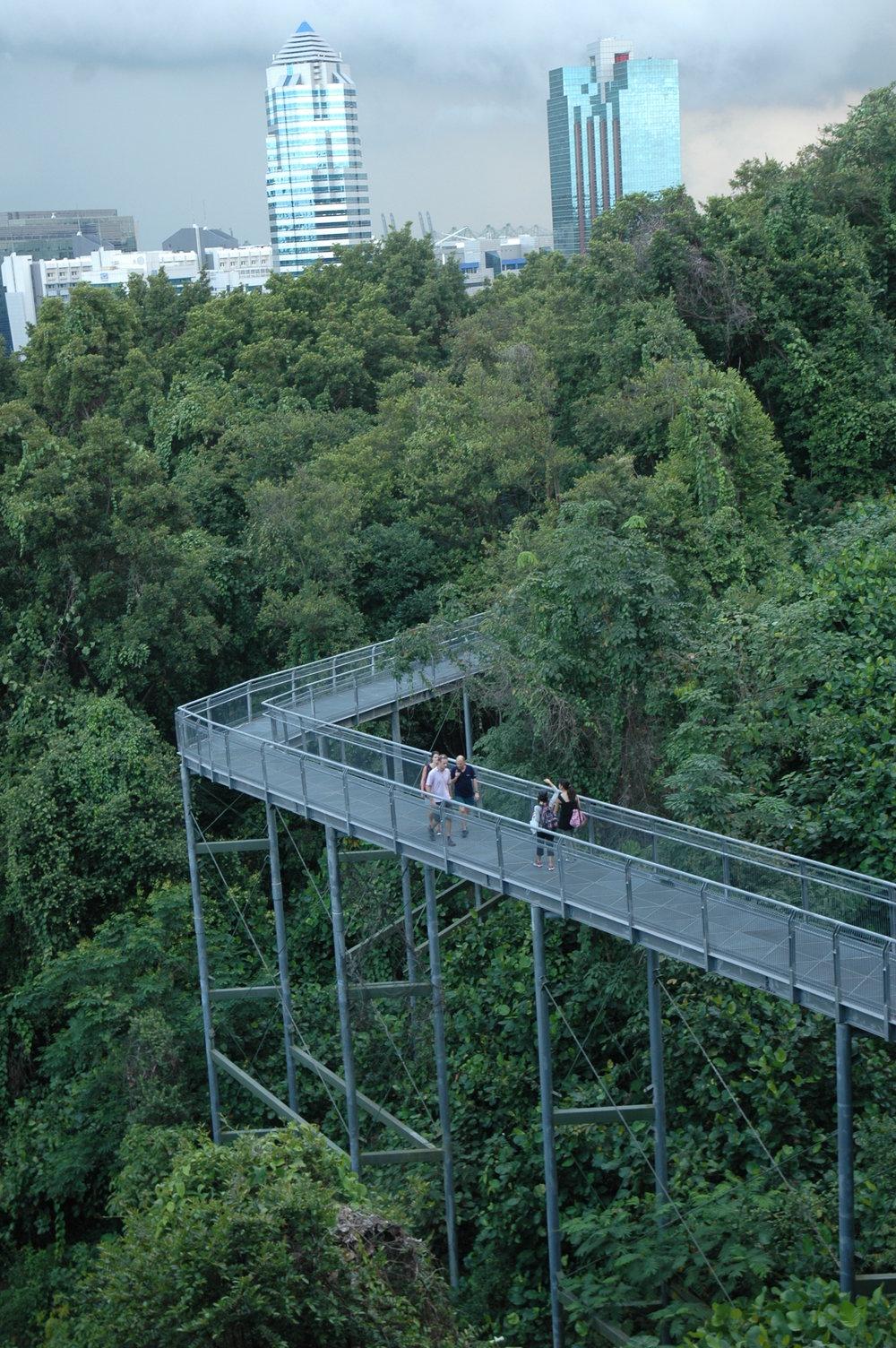 Singapore_006_TimBeatley.JPG