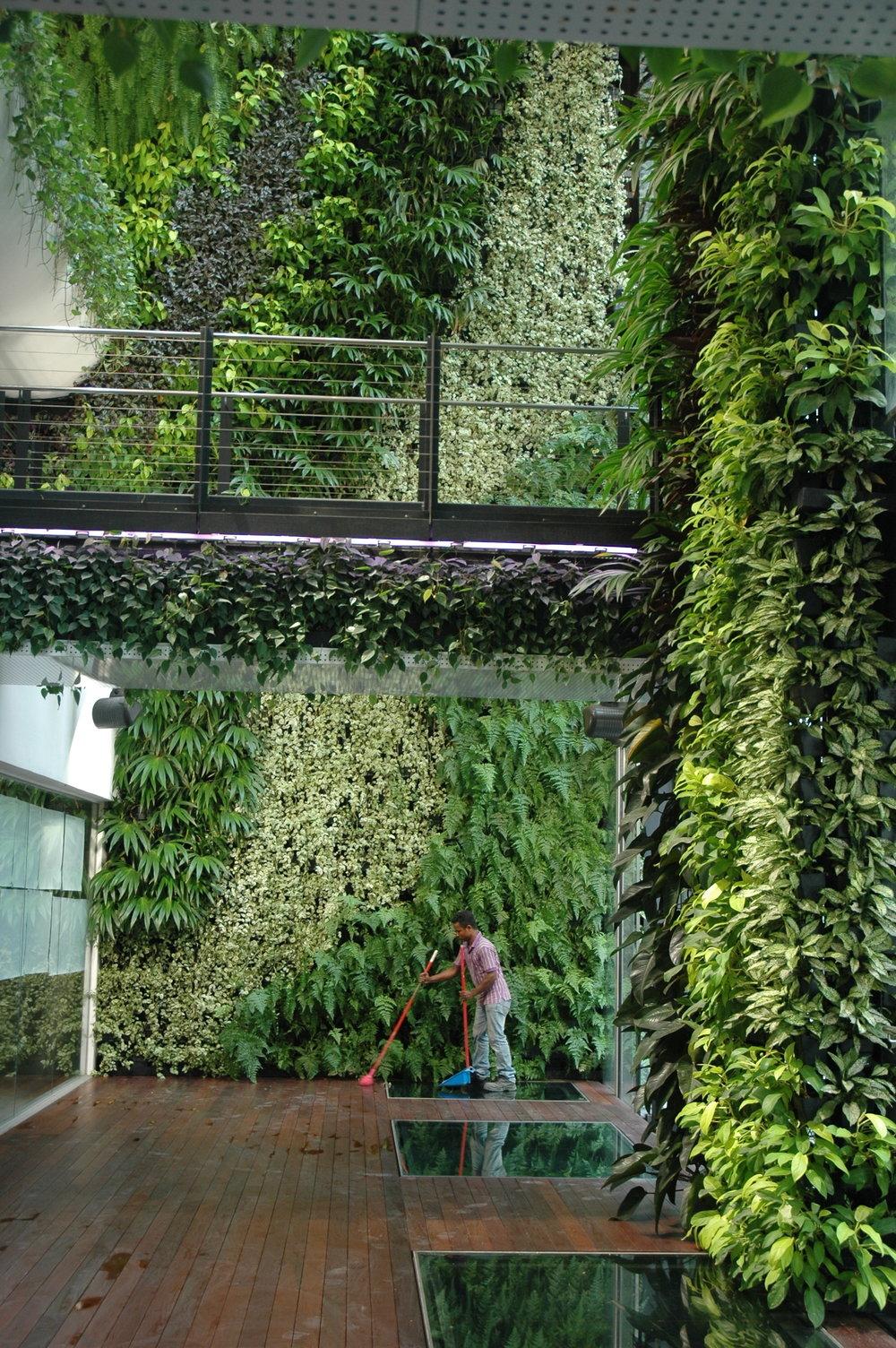 Singapore_007_TimBeatley.JPG