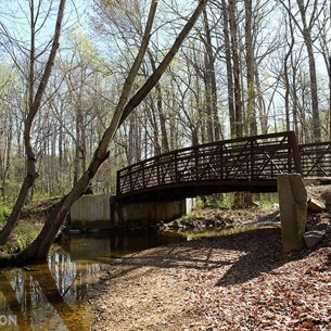 Reston, Virginia -