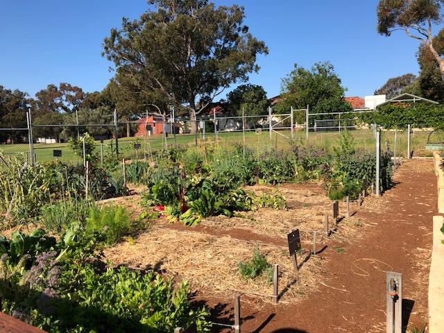 Hilton-Harvest-gardens.jpg