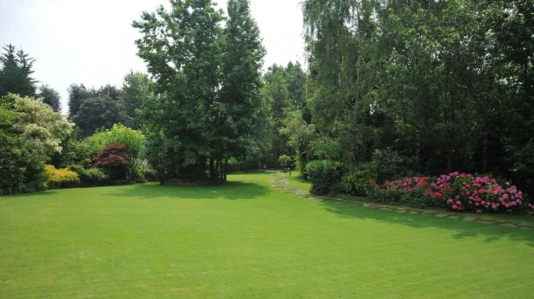 Papis lawn Services - Landscape - Landscaping - Yulee FL - Fernandina FL - Jacksonville FL (8).jpg