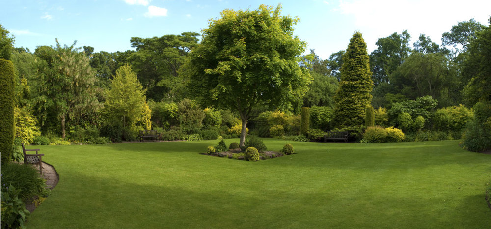 Papis lawn Services - Landscape - Landscaping - Yulee FL - Fernandina FL - Jacksonville FL (19).jpg
