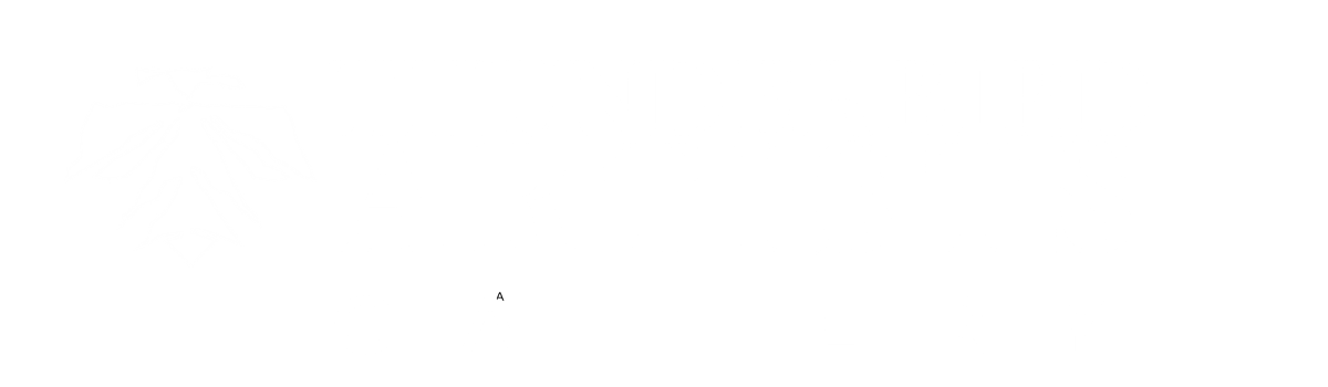 Thunderbird Artists Gallery