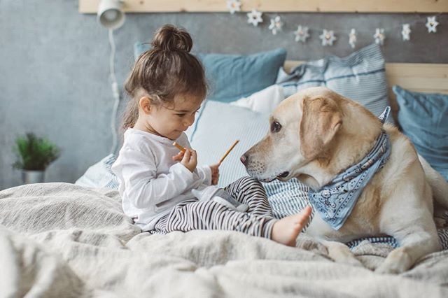 Moments like these 🥰🐶 Made carefree with the Tencel Signature Series Keeping your bed allergy and accident-free, so everyone can enjoy cuddle time  #ProtectABedAU