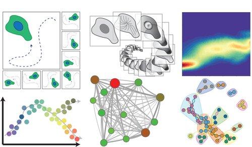 ProtMyc+subcellular+signalling+2.jpg