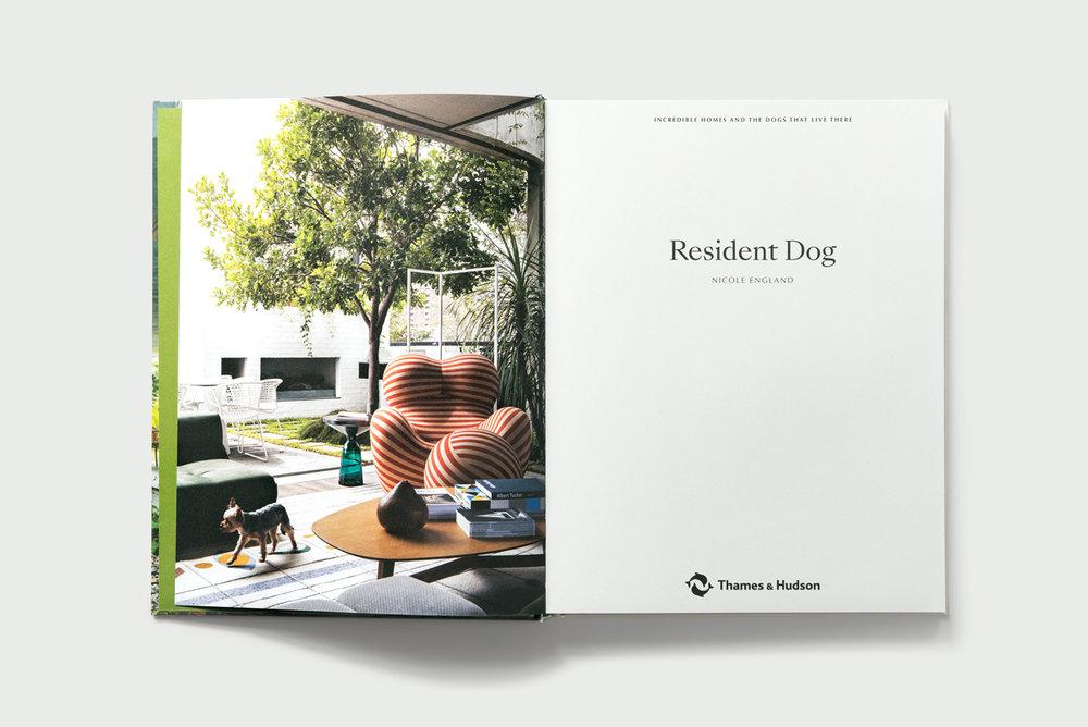 RDbook-15442-LR.jpg