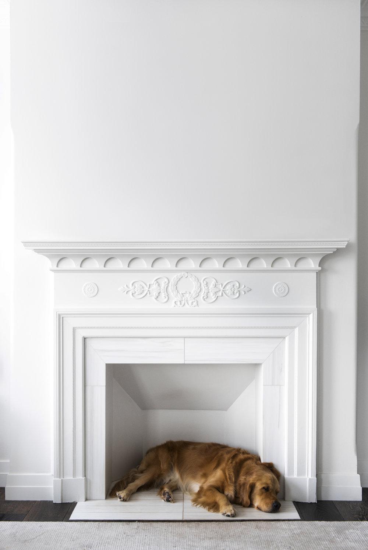Resident Dog Blog-Nicole England-Humphrey3997.jpg