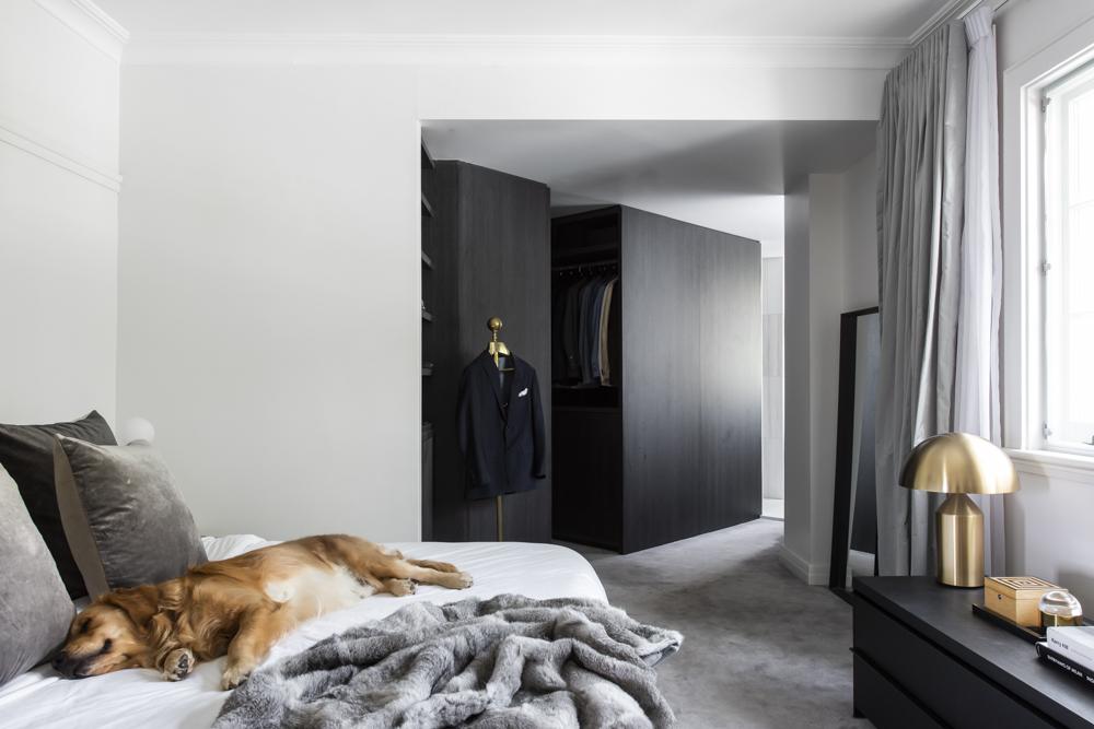 Resident Dog Blog-Nicole England-Humphrey4184.jpg
