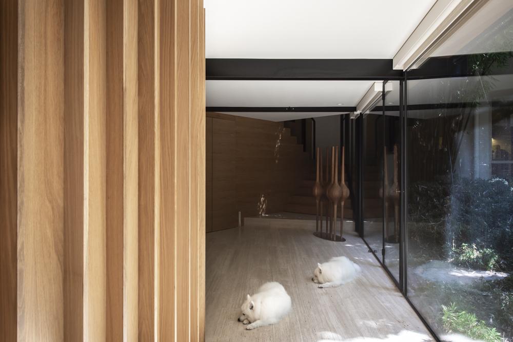 Resident Dog Blog-Nicole England-Luna-Valentine5936.jpg