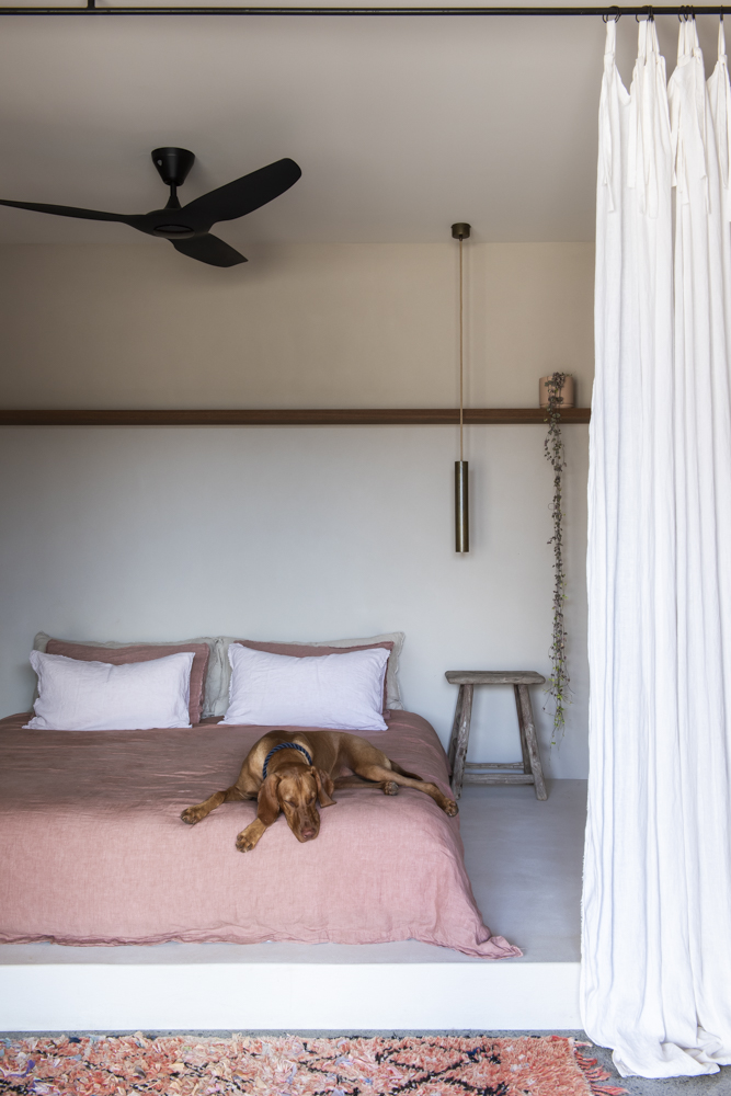 Resident Dog Blog-Nicole England-Ranger4759.jpg