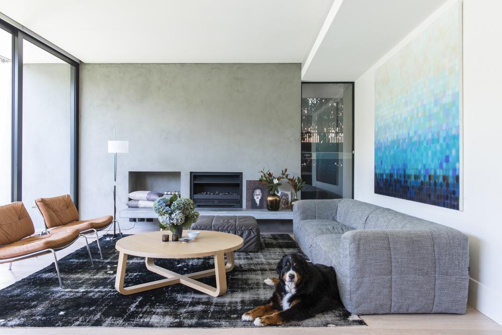 Resident Dog Blog-Nicole England-Meiko5217.jpg