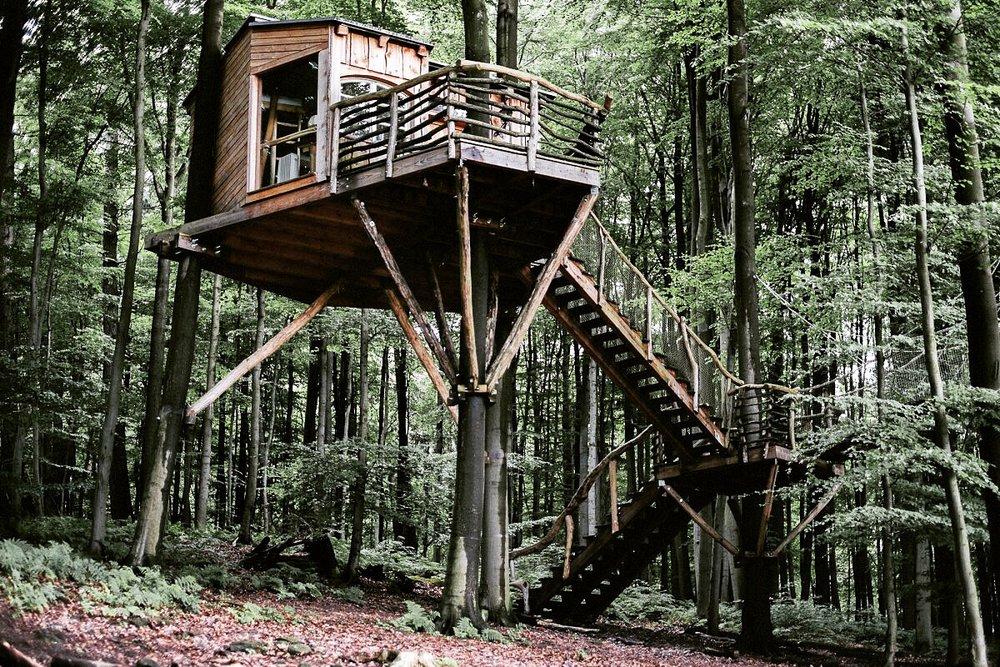 Cork Treehouse Baumhaushotel Robins Nest