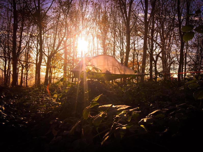 Tree Tent Baumhaushotel Robins Nest