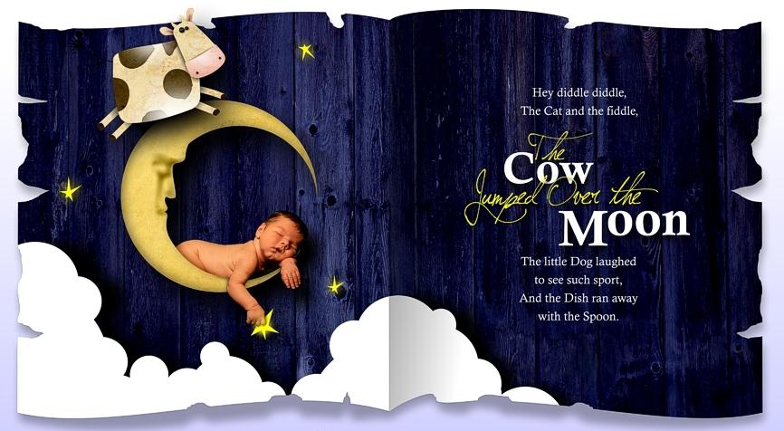 COWweb.jpg