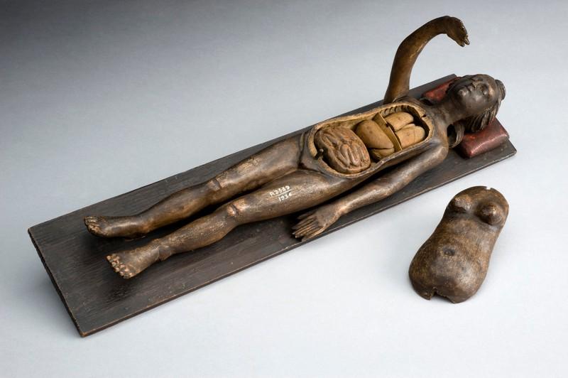 hysterical body wood.jpg