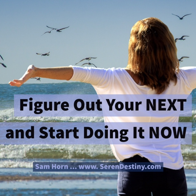what is your next - do now
