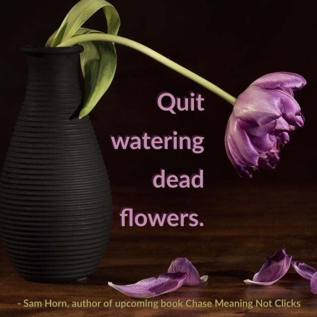 quit watering