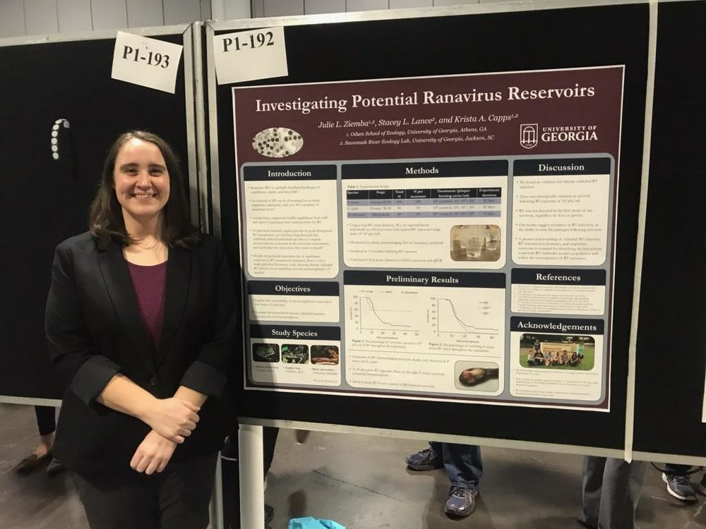 Investigating Potential Ranavirus Reservoirs - Julie L. Ziemba, Stacey L. Lance, and Krista A. Capps - Poster