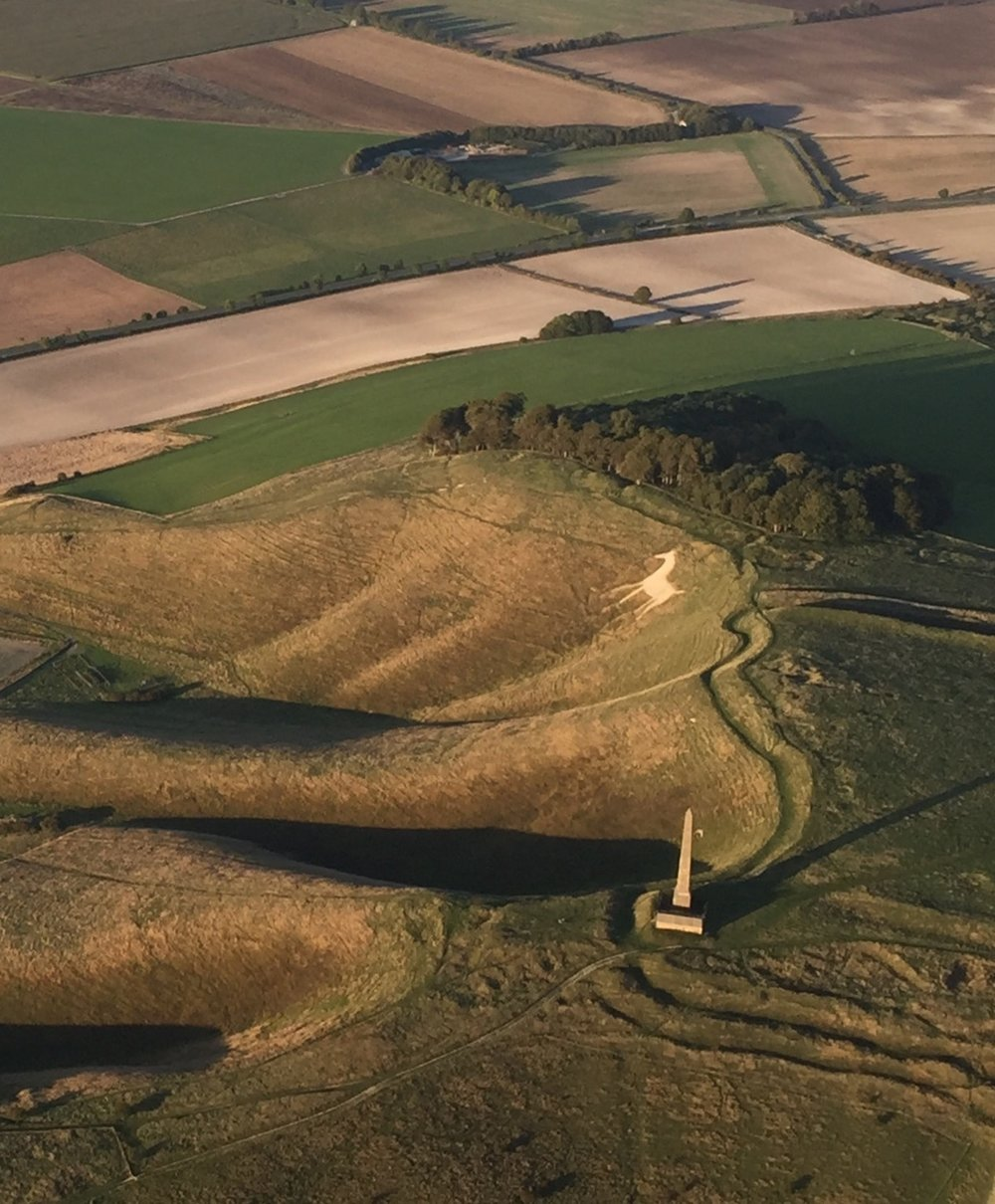 White horse in Wiltshire.jpg