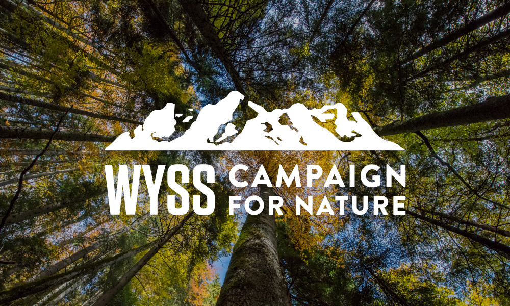 The Campaign for Nature–Get To Know It!