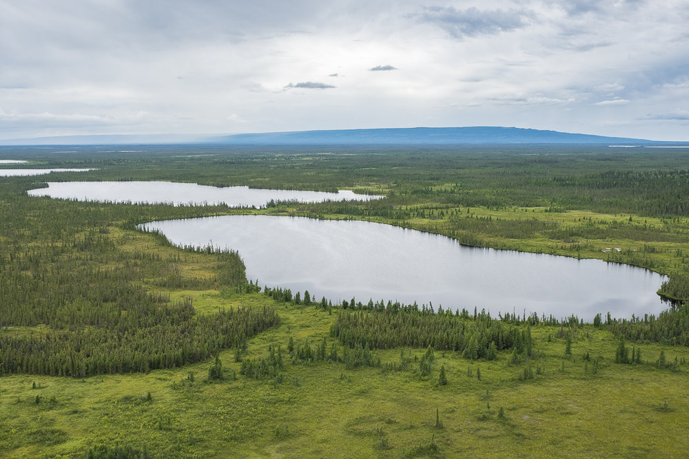 Edéhzhíe Dehcho Protected Area and National Wildlife Area | Photo Credit: Ducks Unlimited Canada
