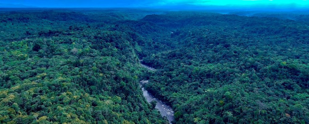 Photo Credit: Nature and Culture International, Huamboya Municipal Conservation Area in Central Ecuador