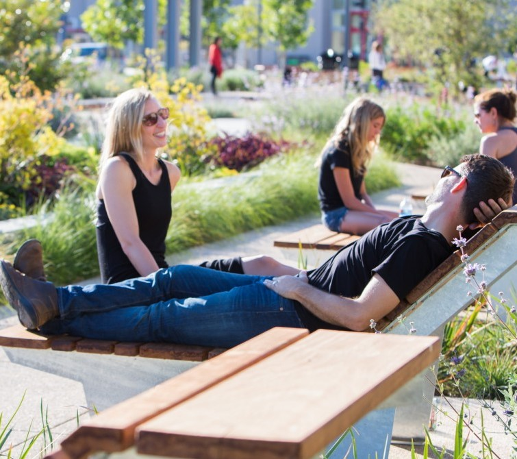 CMG Landscape Architecture   From the SFMOMA Rooftop Sculpture Garden to Crissy Field to the West Oakland Urban Farm and Park to the Facebook campus, CMG has a reputation as one of the most creative landscape architects in the Bay Area. CMG is expert at designing landscapes that draw people in to engage and enjoy the space around them.  Website:  https://www.cmgsite.com
