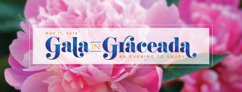 Auction — Gala in Graceada
